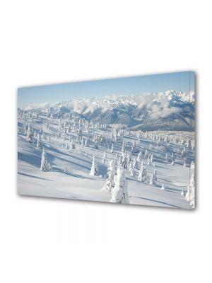 Tablou Canvas Iarna Iarna dupa ce a nins