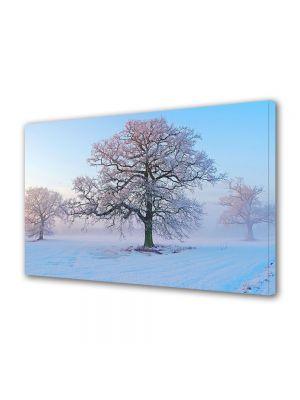 Tablou Canvas Iarna Copacul batran