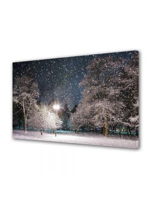 Tablou Canvas Iarna Iarna prin parc