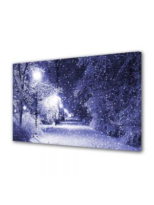 Tablou Canvas Iarna Luminile parcului violet