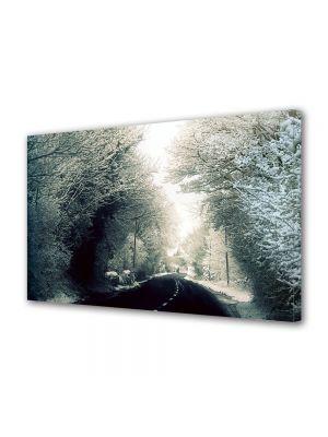 Tablou Canvas Iarna Sosea
