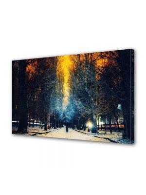 Tablou Canvas Iarna Apus supranatural
