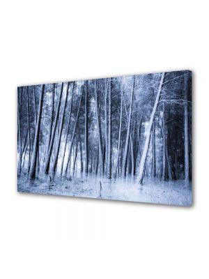 Tablou Canvas Iarna Copaci inalti