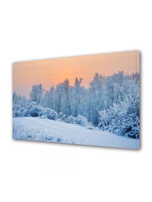 Tablou Canvas Iarna Portocaliu de iarna