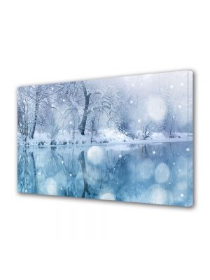 Tablou Canvas Iarna Ninge pe lac