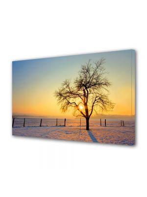 Tablou Canvas Iarna Apus iarna
