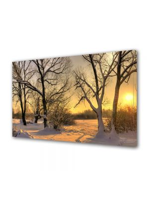 Tablou Canvas Iarna Apus peste padure