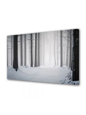 Tablou Canvas Iarna Liniste
