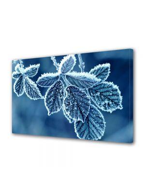 Tablou Canvas Iarna Frunze inghetate