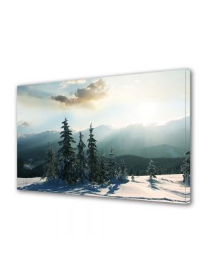 Tablou Canvas Iarna Padure de brazi