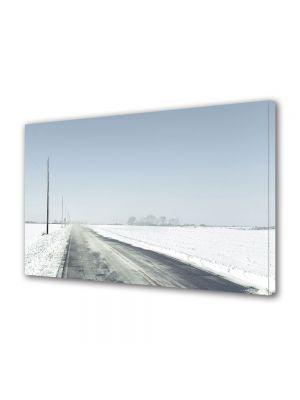 Tablou Canvas Iarna Drum pustiu
