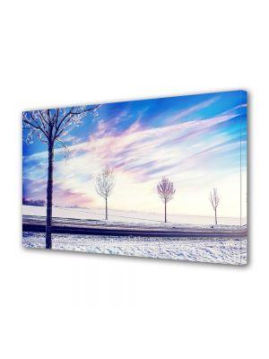 Tablou Canvas Iarna Drum de iarna la apus
