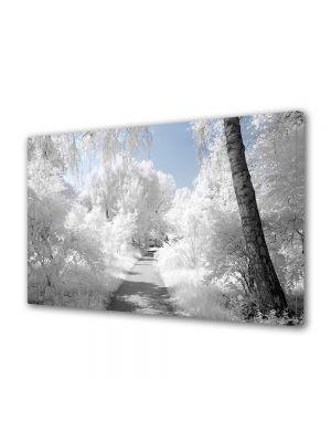 Tablou Canvas Iarna Albul zapezii