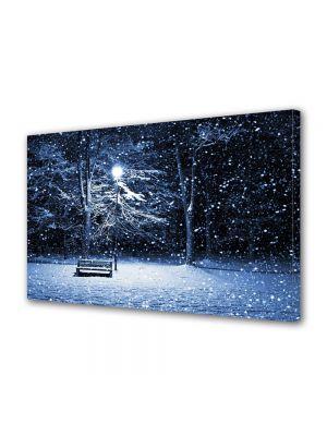 Tablou Canvas Iarna Ninge puternic