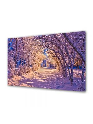 Tablou Canvas Iarna Culori de seara