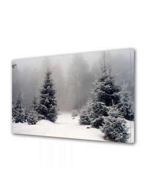 Tablou Canvas Iarna Palc de brazi