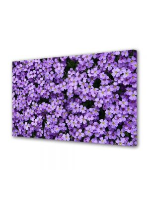 Tablou VarioView MoonLight Fosforescent Luminos in intuneric Flori Flori Violet Aubrieta