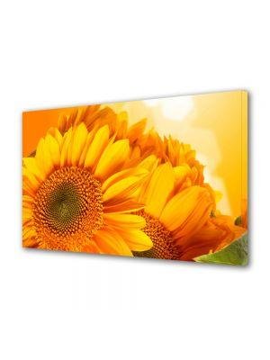 Tablou Canvas Luminos in intuneric VarioView LED Flori Flori aurii