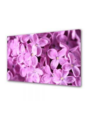 Tablou Canvas Flori Liliac violet