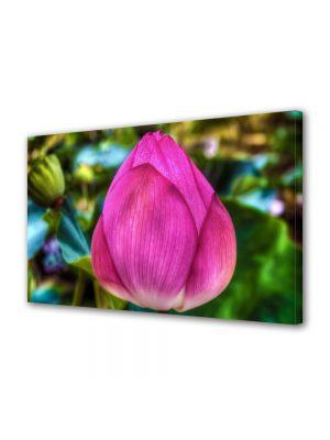 Tablou Canvas Luminos in intuneric VarioView LED Flori Floare de Lotus