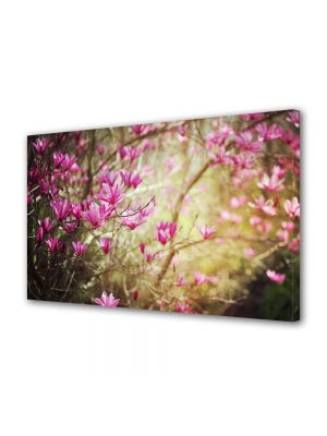 Tablou Canvas Luminos in intuneric VarioView LED Flori Magnolie