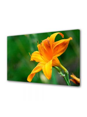 Tablou Canvas Luminos in intuneric VarioView LED Flori Fir de liliac portocaliu