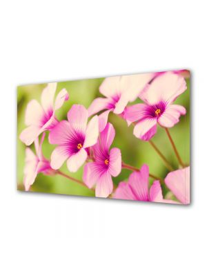 Tablou VarioView MoonLight Fosforescent Luminos in intuneric Flori Petale de flori roz