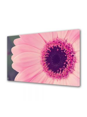 Tablou Canvas Luminos in intuneric VarioView LED Flori Gerbera roz