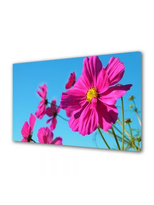 Tablou Canvas Flori Fericire rozalie