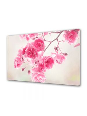 Tablou Canvas Flori Frandafiri roz de gradina