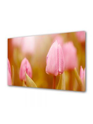 Tablou VarioView MoonLight Fosforescent Luminos in intuneric Flori Mugure de lalea roz