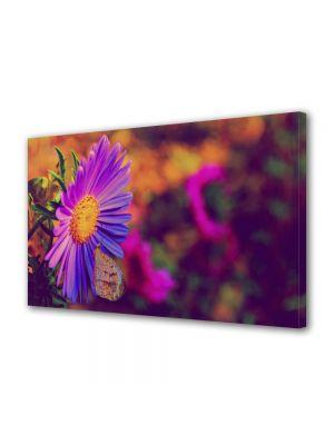 Tablou Canvas Luminos in intuneric VarioView LED Flori Floare cu tente violet