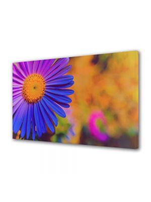 Tablou Canvas Flori Floare Violet