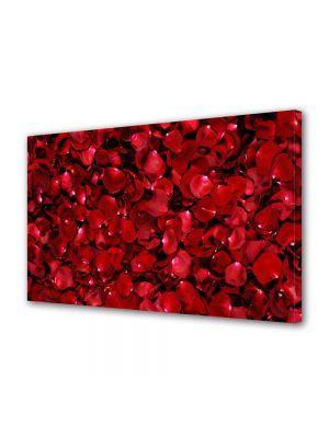 Tablou Canvas Flori Petale de trandafiri rosii