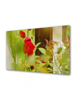 Tablou Canvas Flori Trandafiri la fereastra