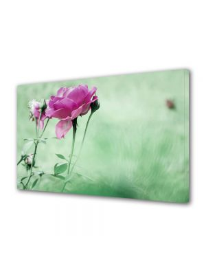 Tablou Canvas Flori Trandafiri cadou