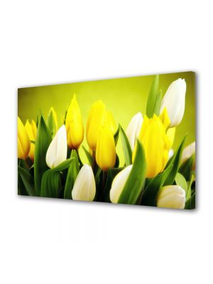 Tablou Canvas Flori Lalele albe si galbene
