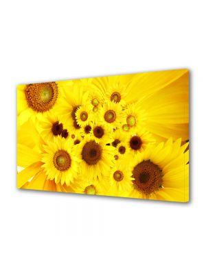 Tablou Canvas Luminos in intuneric VarioView LED Flori Pui de floarea soarelui