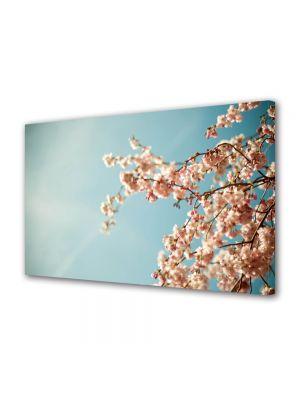 Tablou Canvas Flori Crengura cu lfori albe