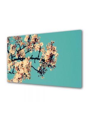 Tablou Canvas Flori Creanga cu flori albe
