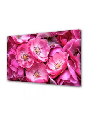 Tablou Canvas Flori Trandafiri violet salbatici