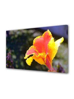 Tablou Canvas Luminos in intuneric VarioView LED Flori Floricica in lumina soarelui
