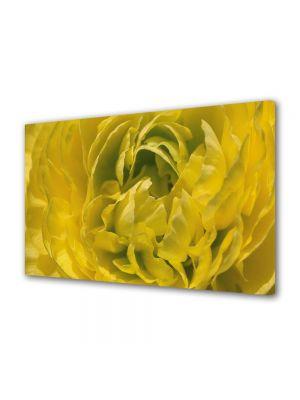 Tablou Canvas Flori Petale aglomerate