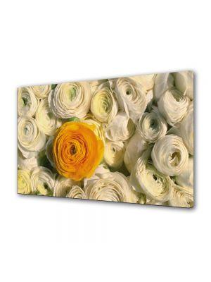 Tablou Canvas Flori Floare portocalie printre flori albe