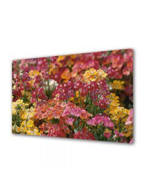 Tablou Canvas Luminos in intuneric VarioView LED Flori Aglomeratie de flori