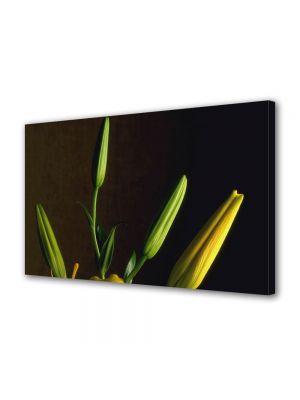 Tablou Canvas Luminos in intuneric VarioView LED Flori Inainte sa infloreasca