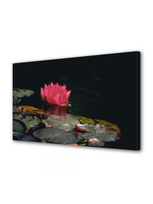 Tablou Canvas Luminos in intuneric VarioView LED Flori Floare de nufar