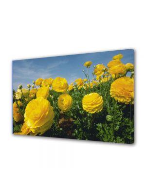 Tablou Canvas Flori Flori galbene