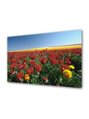 Tablou VarioView MoonLight Fosforescent Luminos in intuneric Flori Camp colorat cu flori de vara