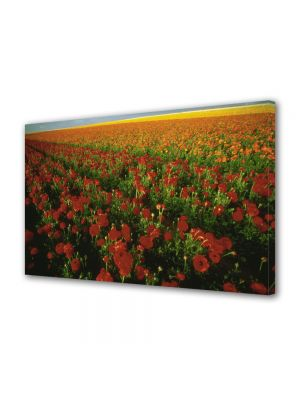 Tablou Canvas Luminos in intuneric VarioView LED Flori Plantatie de flori